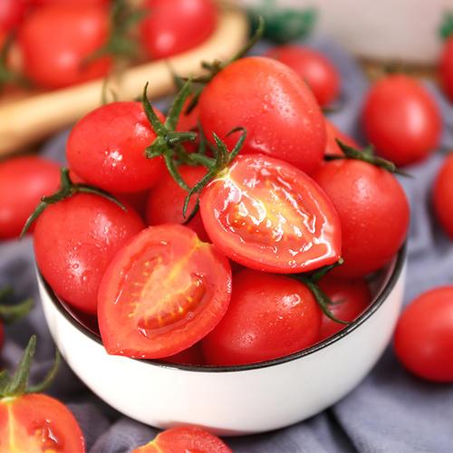 樱桃番茄种子发芽期应该注意什么事项?